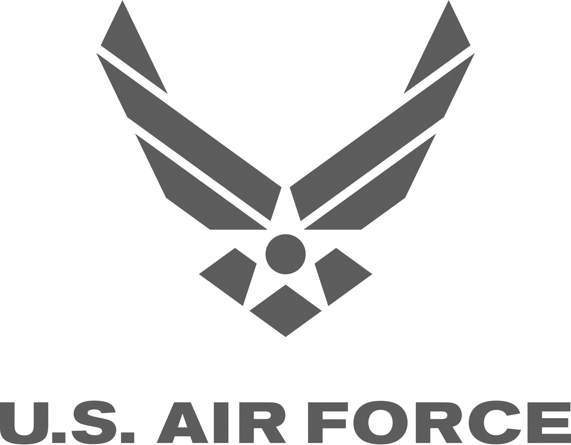 US airforce logo grey 2