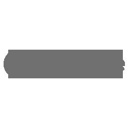 Vodafone logo grey 250x250