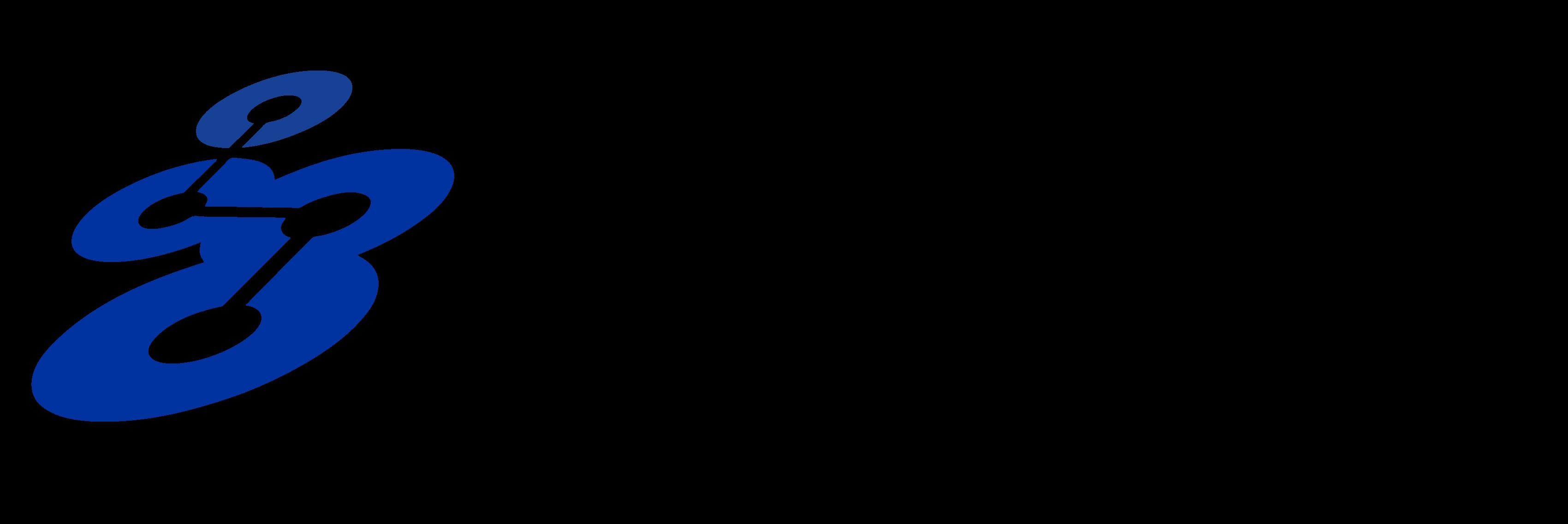 Songwon logo.